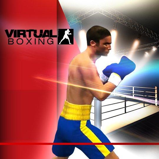 Virtual Boxing Virtual Game Idle Screen