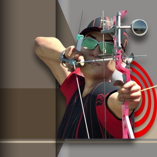 Virtual Archery Virtual Game Idle Screen