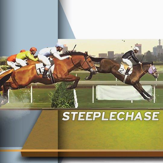 Virtual Steeplechase Virtual Horse Game Idle Screen