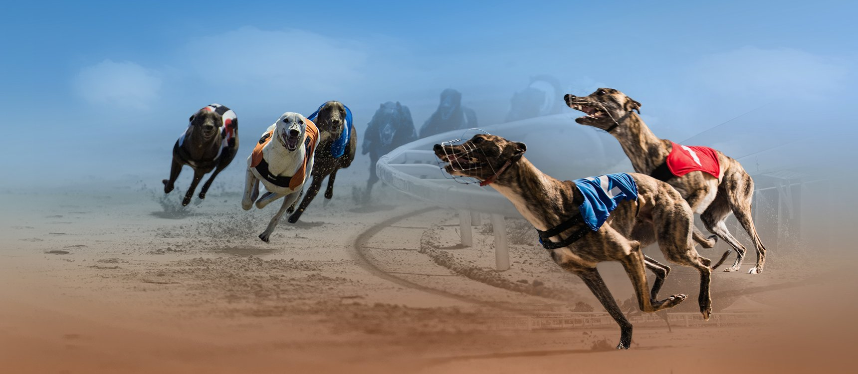"Vermantia and Kiron Interactive announced they had joined forces to deliver the ""next generation"" of virtual racing using real greyhound racing content"