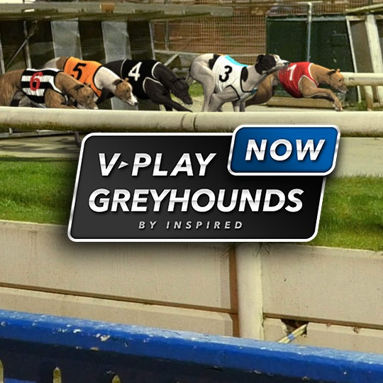 On-Demand Virtual Game Virtual Greyhounds Intro Screen