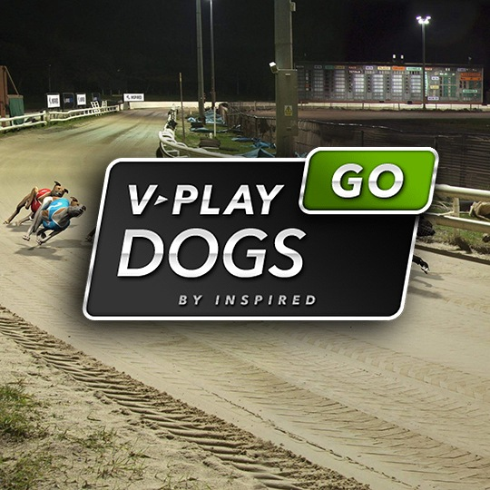 On-Demand Virtual Game Virtual Dogs Intro Screen